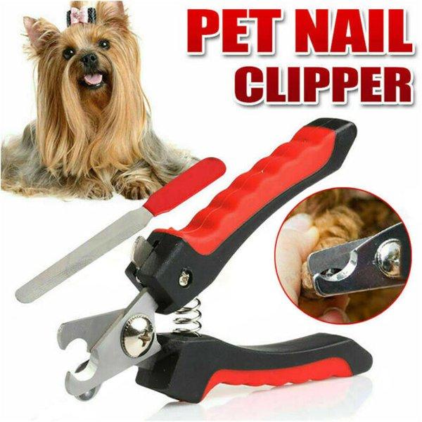 Bạn có thể cắt móng chân cho chó bằng kìm cắt móng của người không?